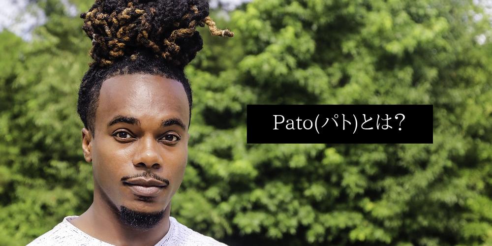 Patoパトとは